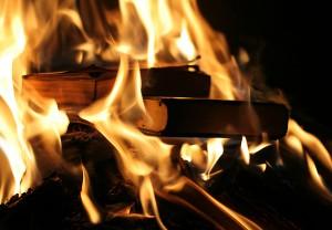 Книги - в огонь!